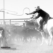 Out. Back. Iconic images of western Queensland