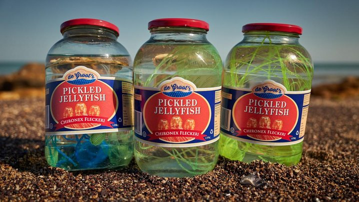 The Jelly Fish Pickle
